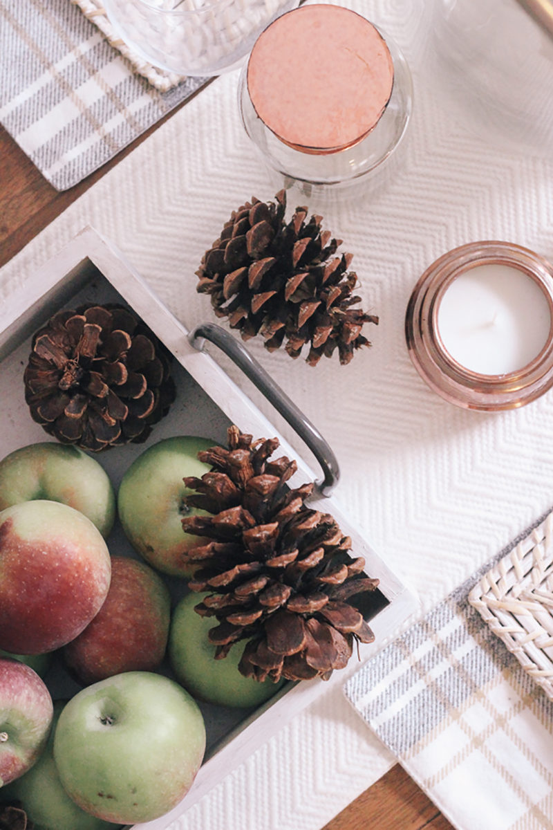 Fall Home Finds I Love