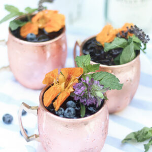 Blueberry Gin Mule Featured Image
